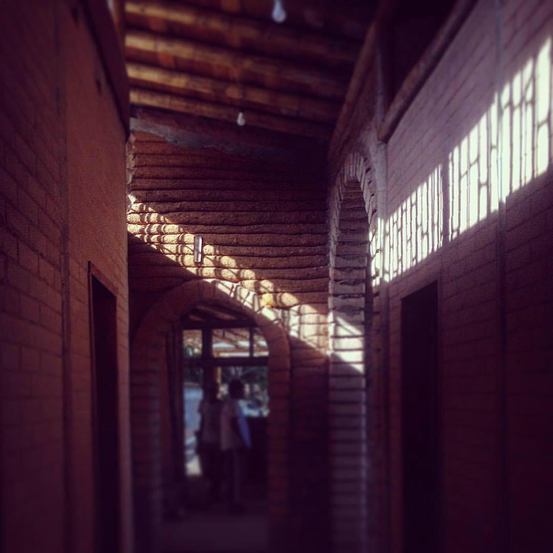 Bambu foi o material escolhido para dar sustentação ao telhado verde